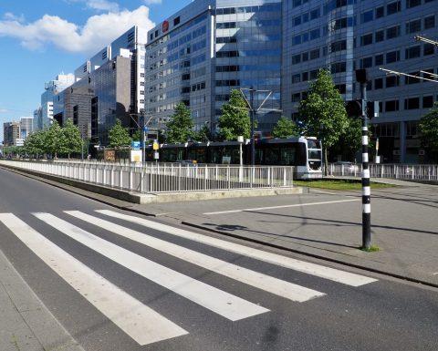 Zebrapad Rotterdam