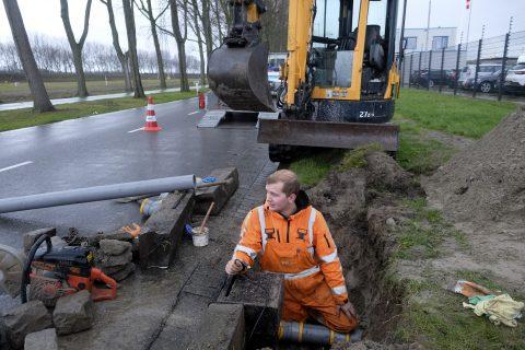 Slimme kolk. Foto: Ries van Wendel de Joode / Havenbedrijf Rotterdam