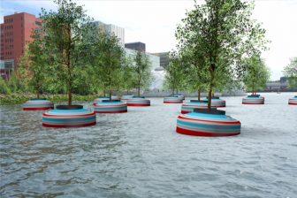 Dobberend Bos (foto: gemeente Rotterdam)