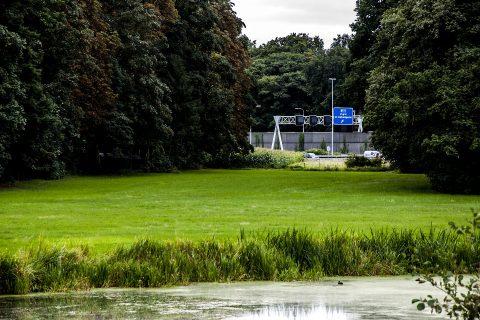 A2 groen, snelweg. Foto: Ivo Ketelaar Fotografie