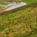 Hoogwater dijken. Foto: Ivo Ketelaar Fotografie