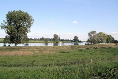 Meanderende Maas. Foto: Hoogwaterbeschermingsprogramma