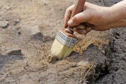 Archeologie. Foto: iStock / Krugloff